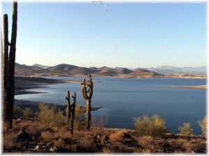 Lake-Pleasant-view-with-cactus-300x224